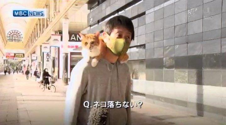 코로나로 직장이 휴업중인 사람의 인터뷰가 화제3_Q. 고양이 안떨어지나.jpeg